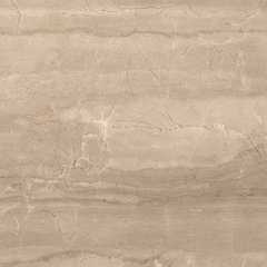Evolution Gris pol. 60x60